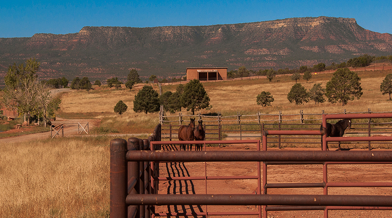 The Gottsch Family Ranch - A Perfect Place to Ride